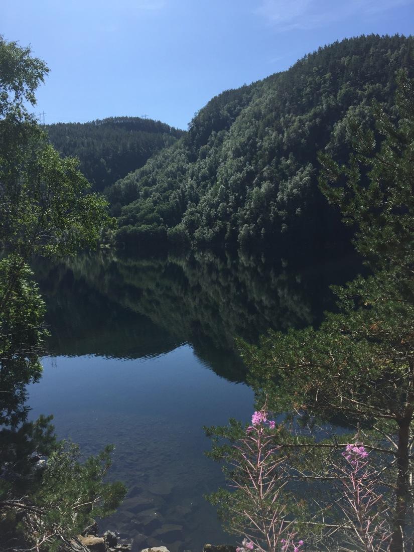 Nur in einem ruhigen Teich…